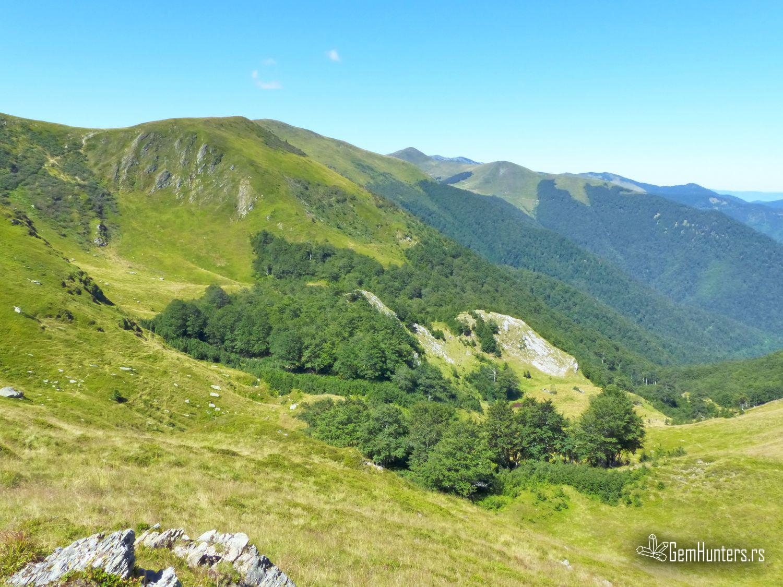 Ljepotica Bosanskih škriljavih planina – Zec