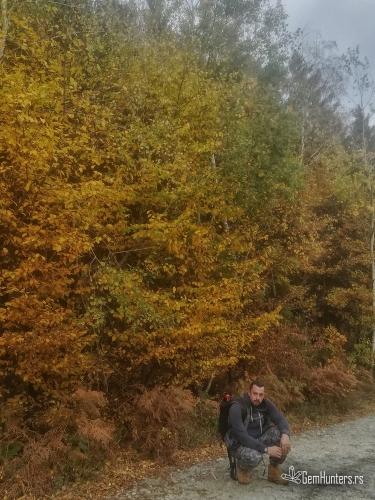 Jesenje boje Cera